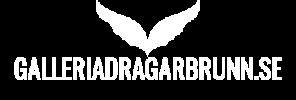 Galleriadragarbrunn.se